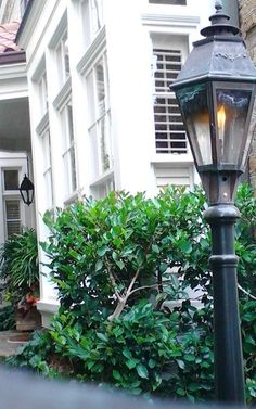 Welcome lantern~Charleston~Conchetta