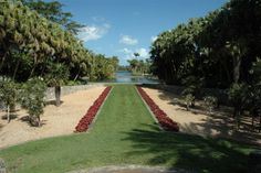 top-6-garden-wedding-venues-florida-fairchild-tropical-botanical-gardens001 - The Celebration Society