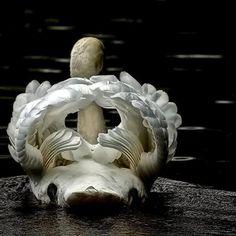 白鳥の羽が開くとこ。内部構造は想像以上に複雑。 pic.twitter.com/GtaTuvnQ77