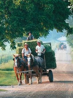 "Nappanee, Indiana  Settled on the edge of north-central Indiana's Amish Country, Nappanee (population: 7,070) has a philosophy centered on the phrase ""Embrace the Pace."" The town has cultivated that spirit by supporting small businesses and an RV industry, and Amish and ""English"" neighbors live out the slogan in their daily interaction. Horse-drawn wagons (left) are a common sight here."