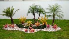 Beginner's Guide To Tropical Landscaping Design Plans – My Best Rock Landscaping Ideas Landscape Design, Front Yard Landscaping, Garden, Landscaping With Rocks, Rock Garden Landscaping, Palm Trees Landscaping, Tropical Garden, Small Gardens, Tropical Landscaping
