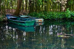 Boats in the pond in Monet's garden, Giverny, France.