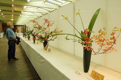 Ikebanas exposicion