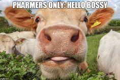 FARMERS CO-OP Meme Generator - Imgflip