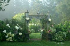 How beautiful is this garden?