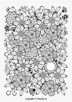 Coloring page book - Coloring Book for Adults-004