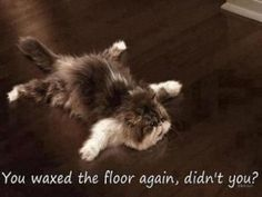 You waxed the floor didn't you