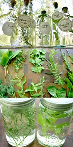 herb-infused vodkas #herbs #cocktails #vodka #DIY
