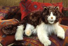 PuppetU.com - Folkmanis Cat Ragdoll Hand Puppet, $31.49 (http://store.puppetu.com/products/Folkmanis-Cat-Ragdoll-Hand-Puppet.html)