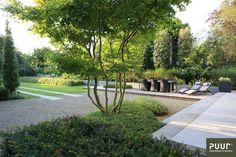 Formal Gardens, Small Gardens, Outdoor Gardens, Minimalist Garden, Raised Planter, Garden Architecture, Garden Landscape Design, Contemporary Landscape, Front Yard Landscaping