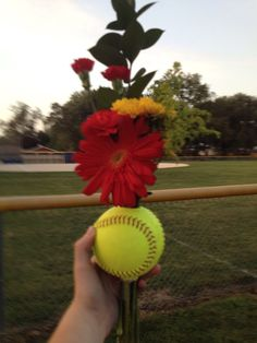 Softball flowers Drill a hole thru softball and insert flowers