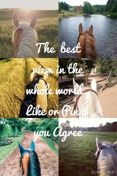 I can't wait to get my own horse and then take cute pictures like these aha More
