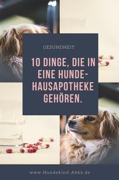 #Musthave #Hund #Hunde #Hundeliebe #Gesundheit #Hundeblog #Hundeblogger #Wissen #Hundewissen
