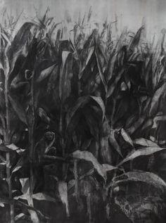 "Dan Beudean ""Monkeys"" graphite on paper mounted on wood Vitamin D2, A Level Art, Monkeys, Graphite, Art Boards, Dan, Plant Leaves, Gallery, Drawings"
