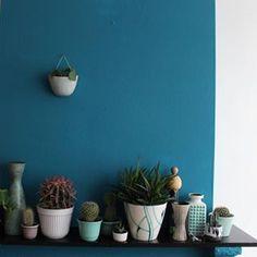 Plants + ceramics   @kolifleur