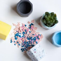 Create a Mini Terrazzo Planter on 14 Dec 2019 / 1100 - 1230 Small Succulent Plants, Planting Succulents, All Tools, Terrazzo, Terrarium, Create Your Own, Craft Projects, How To Memorize Things, Planters