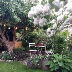 Mikä ihana kesäparatiisi! Sunnuntai-illan vinkki: @malinbrostad puutarha ja koti  #sfs #notmypic #piha #puutarha What a summer paradise! Sunday night tip: @malinbrostad garden and home  #gofollow #garden