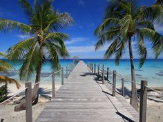 Pier and Palms, Fakarava, French Polynesia