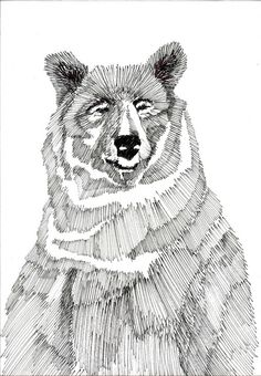 An example of an Illustration produced using pencils. Shadows were created by the use of   vertical line showing that shading is not necessary.