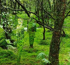 """""""Scottish sculptor Rob Mulholland creates these eerie mirrored sculptures out of Perspex, a kind of acrylic glass."""" His website explains that """"The human desire to leave a trace of ones-self for future generations has always intrigued him. It's a driving force to create and leave a semblance of our-selves as individuals and as a society. The reflective figures ask us to look again and consider the symbiotic relationship we have with our natural and man-made environment."""" Caption from link"""