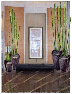 Beau Adding Some Bamboo Shoots To Your Home Can Liven The Place Up By Adding  Some Bright