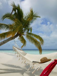 Fiji beach, hammock, sun hat, book...........all that seems to be missing in the pic is me!!!!!! :)