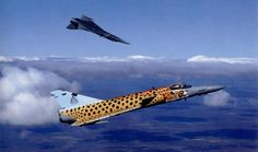 This Aircraft was used in air shows and displays South African Air Force, Battle Rifle, Air Force Aircraft, Air Show, Military Art, War Machine, North Africa, Military Aircraft, Wonders Of The World