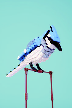 "LEGO ART: Bradley the Blue Jay (2012) by Thomas Poulsom • see many more lego art master pieces in Mike Doyle's 2013-10 book ""Beautiful LEGO"" (wired article 2013-10-10_ 84541)"