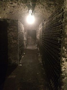 Bottles aging in the moldy cellar at Lopez de Heredia in Rioja. Some of these wines are 100+ years old!