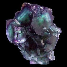 Fluorite. Okorusu Mine (Okarusu Mine), Otjiwarongo District, Otjozondjupa Region, Namibie Taille=8 x 7.1 x 5 cm Photo © John Stolz