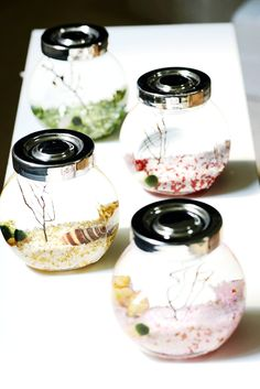 1000 images about marimo obsessed on pinterest marimo marimo moss ball and terrarium. Black Bedroom Furniture Sets. Home Design Ideas