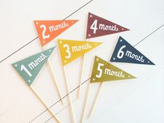 Baby Month Flags Printable // Milestone Photo Prop by Kindertype, $5.00