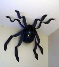 Giant spiders!