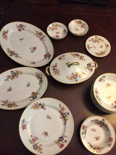 Very Rare Set of Antique Theodore Haviland Limoges China,1920\'s ...