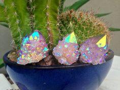 Angel Aura Cactus Spirit Quartz Piece 354 by TheCrystalFairies