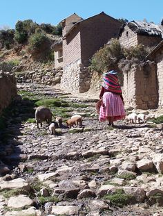 Isla del Sol, Lake Titicaca, Bolivia. An Aymara woman wanders home from the market.