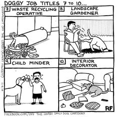 Doggy Job Titles 7 to10...