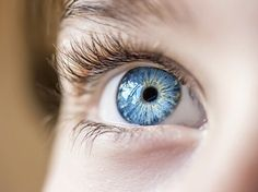 Light Blue (Eyedrops) Buy color changing blue eye drops from Change My Eye. Our revolutionary color changing eye drops will give you the clear blue eyes you've always wanted. Aloe Vera, Photo Oeil, Blue Eyes Aesthetic, People With Blue Eyes, Light Blue Eyes, Ocean Blue Eyes, Plum Hair, Blinde, Eye Drops