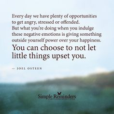 Every day we have plenty of opportunities to get angry, stressed or offended. But what you're doing when you indulge these negative emotions is giving something outside yourself power over your happiness. You can choose to not let little things upset you. — Joel Osteen