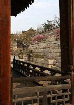 Korea_Changdeokgung_20140407_06