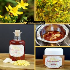 John& wort oil and make Johanniskrautsalbe yourself - Aromatherapie - Clover Oil, Distilling Equipment, Coconut Oil Soap, Clean Your Washing Machine, Healthy Beauty, Home Made Soap, Dory, Herbalism, Remedies