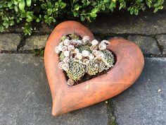 Ein Herz aus Ton mit Hauswurz angepflanzt.