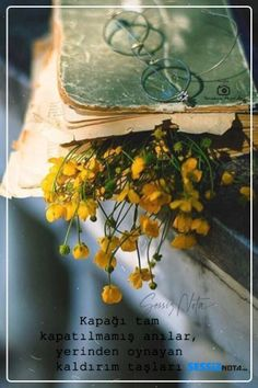 Nostalgia, Books, Painting, Vintage, Shabby Flowers, Book Covers, Ideas, Libros, Book