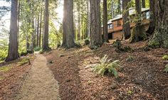 For Sale: $3,988,000. 18 Photos. 3 bed, 2.0 bath, 2,850 sqft house at 9 Summit RD. This home is unique and a must see. The beauty of the design & the quality of this contemporary home is amazing. Enjoy panoramic views of the redwoods and Silicon Valley. The open floor plan, soaring ceilings & beautiful finishes make this special home the perfect getaway and the ideal place to entertain friends & family. Large workshop above garage. Don't miss the view from the meadow. Total of...