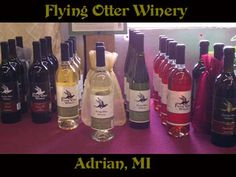 Flying Otter Vineyard and Winery