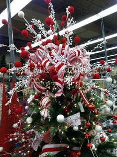 If you want to recycle, there are several things you are able to use for homemade Christmas Tree Ornaments. Most homemade Christmas tree ornaments can be produced with items found in or around your house, with little to no expense… Continue Reading → Xmas Tree Toppers, Diy Christmas Tree Topper, Diy Tree Topper, Homemade Christmas Tree, Christmas Tree Tops, Beautiful Christmas Trees, Christmas Tree Decorations, Christmas Wreaths, Christmas Ornaments