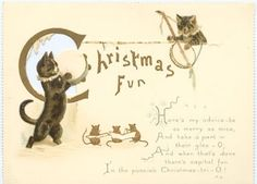 cats--collection of cards featuring cats