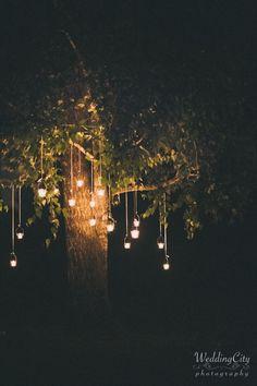 love this outside tree romantic deco... Destination Wedding Photographers - Venice - Siena - Amalfi Coast