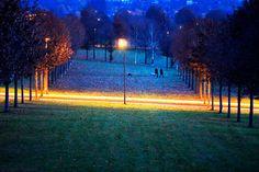Un parco di Francoforte, in Germania, durante le prime luci dell'alba. - (Michael Probst, Ap/Ansa)
