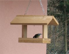 http://www.amicingiardino.it/uploads/imageXpost/2012/02/IMG_6885-small.jpg